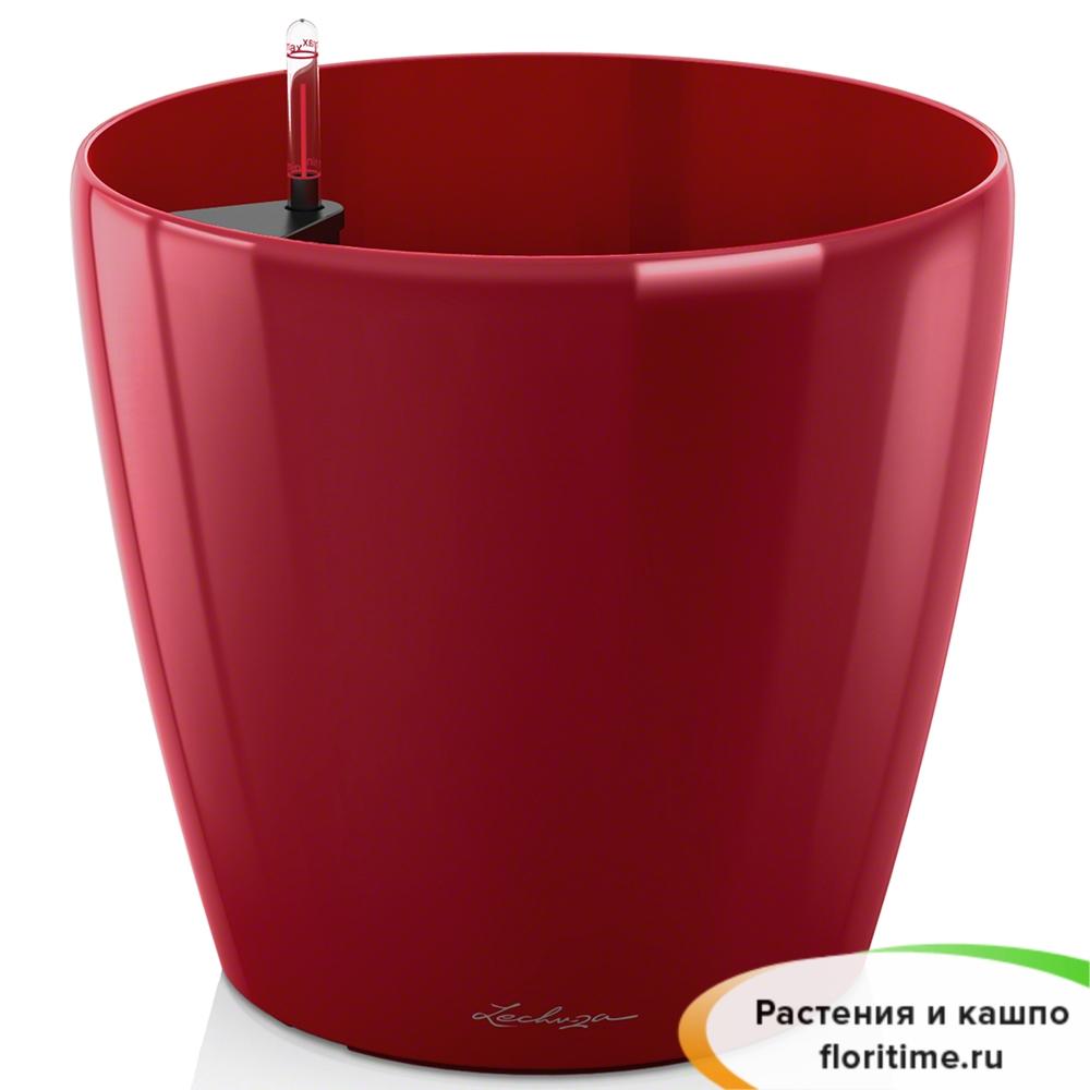 Кашпо Lechuza Classico, ярко-красный блестящий
