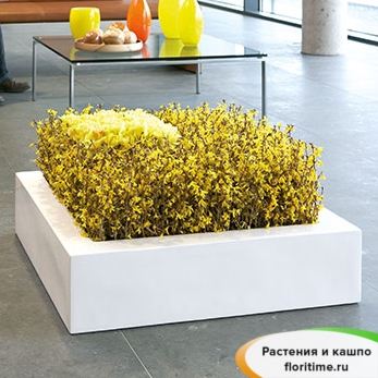 Кашпо ASTRO GRAVITY planter, смола
