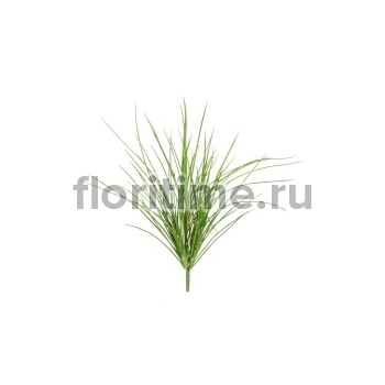 Трава куст малый