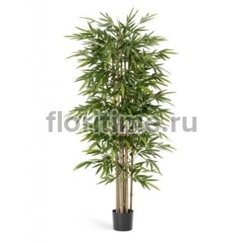Бамбук искуственный