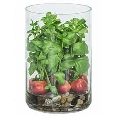 Композиция из искусственных растений basil tomatos stones  Диаметр — 25 см