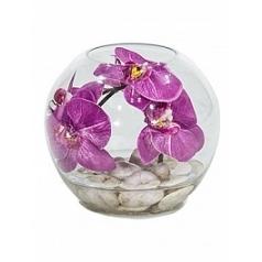 Композиция из искусственных растений orchid розовый light stones  Диаметр — 20 см