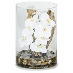 Композиция из искусственных растений orchid white, белого цвета drift wood stones  Диаметр — 25 см