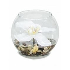 Композиция из искусственных растений orchid white, белого цвета stones  Диаметр — 10 см