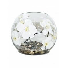 Композиция из искусственных растений orchid white, белого цвета stones  Диаметр — 30 см