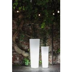 Newpot Vase